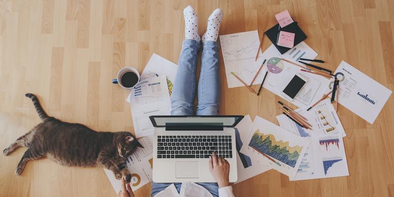 Persone che lavora seduta sul pavimento con il pc sulle gambe e gattino di fianco
